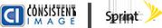 Consistent Image Logo