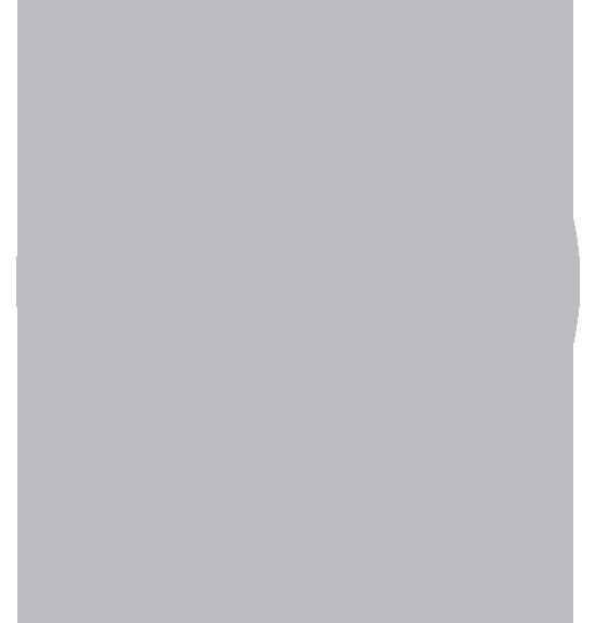 MadCap Lingo Icon