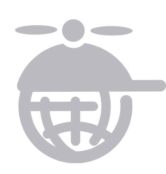 Translation Icon