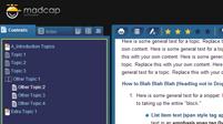 Blue Borders, Flare HTML5 Skin