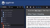 BluePrint, Flare HTML5 Skin